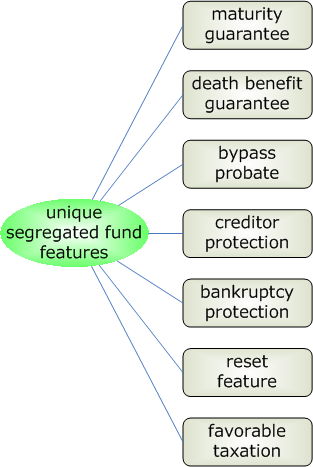 segfund_unique_features.png